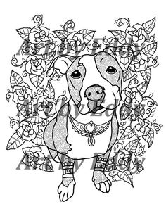 Pit Bull Color Pages