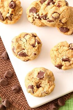 Peanut Butter Chocolate Chip Cookie Bites - sure to be a crowd pleasing treat!