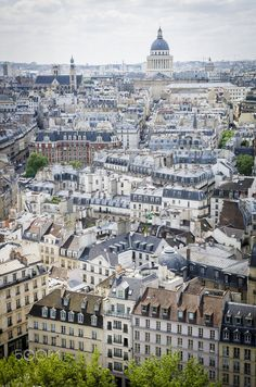 Les toits de Paris et le Panthéon depuis le rooftop de Notre-Dame de Paris, Gencive de Truie