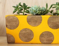 cute planter DIY