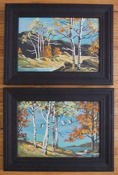 Vintage paint by numbers, framed, birch forest and ducks, in excellent condition. $40.00, via Etsy.