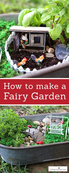 An Herb Fairy Garden is a fun container garden for your kitchen! Easy tutorial for how to make a mini fairy garden for your home. Cute kids craft ideas.