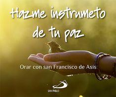 HAZME UN INSTRUMENTO DE TU PAZ: ORAR CON SAN FRANCISCO DE ASIS ...