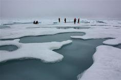 foi o mar de gelo do Ártico e os pedaços derretidos no Mar de Chukchi. A missão de campo de cinco semanas foi dedicada para se obter amostrar físicas, ...