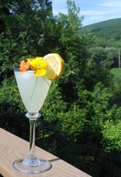 your vodka and lemonade never tasted so good!