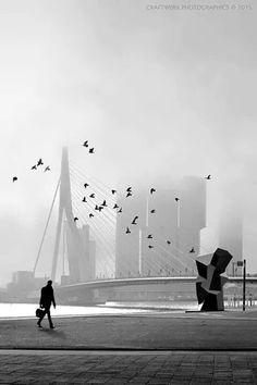 Rotterdam Black&White
