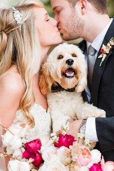 Dog with Black Polka Dot Bow Tie | Anna K Photography https://www.theknot.com/marketplace/anna-k-photography-llc-atlanta-ga-597931