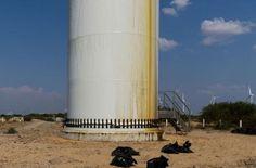 Turbinas eólicas contaminan el suelo de México