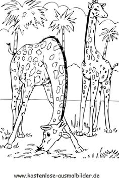 ausmalbilder afrikanische tiere Afrika Pinterest