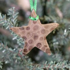Northern Michigan Gifts and Petoskey Stones