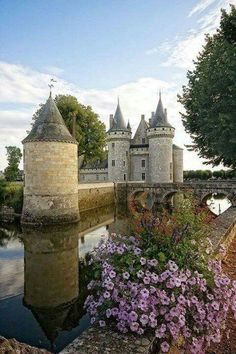 *Photo by Nature's Finest Captures - Castle of Sully-Sur-Loire, France*