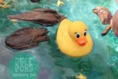 Duck Pond Sensory Bi