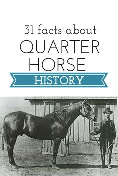 These are the 31 American Quarter Horse historical markers throughout the U.S. and Canada