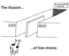 illusion-of-free-choice