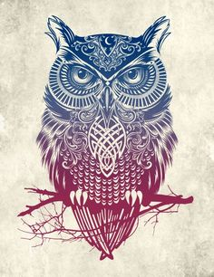 Warrior Owl Metal Displate