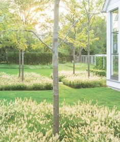Flower Gardening Design Tour a Classical New England Home with a Contemporary Landscape via - Heavily influenced by Dutch landscape architect Mien Rhys, DHDA envisioned a clean, modern landscape.