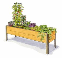 Kitchen Garden Planner - Preplanned Gardens - Salad Garden, - Here's a plan we can do! Garden Bed Layout, Raised Bed Garden Design, Garden Layouts, Garden Site, Garden Online, Home Vegetable Garden, Veggie Gardens, Garden Planner, Square Foot Gardening