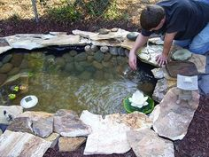 Construction of a DIY Pond. I want a gold fish pond, it'd add a lot to the yard!