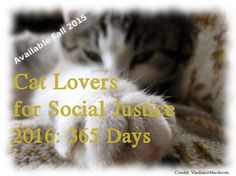 2016: Cat Lovers for Social Justice Mobile App