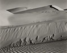 EDWARD WESTON Dunes, Oceano;   1936 Gelatin silver print, printed in the late 1940s or early 1950s. Initialed and dated by the artist in pencil on the mount. Estimate. $50,000 - 70,000  SOLD FOR $60,000