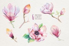 Watercolor magnolia by Peace ART on @creativemarket