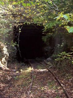 Old Train Tunnel-Would love to go in this tunnel-Marilyn (Busby) Horchem