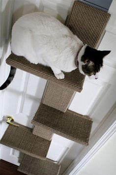 Modern Cat Tree: The Climber from Cat Livin Cat Climbing Wall, Cat Habitat, Cat Climber, Living With Cats, Cat Perch, Cute Baby Cats, Cat Room, Cat Condo, Outdoor Cats