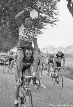 CYCLING ART BLOG: Francesco Moser ....surely that is uncomfortable. For someone.