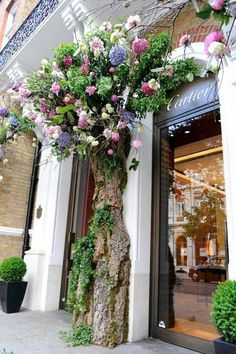 Awesome Florist Shop Design and Decor Ideas 23 - Awesome Indoor & Outdoor Deco Floral, Arte Floral, Floral Design, Decoration Vitrine, Decoration Entree, Vitrine Design, Shop Fronts, Jolie Photo, Flowering Trees