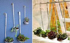 30 Ideas creativas con plantas para decorar tu hogar y jardín Buffet, Shabby, Green Kitchen, Dream Garden, Plant Hanger, Garden Plants, Ideas Para, Ideas Decoración, Succulents