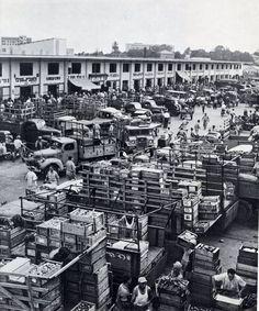 Israel's big Wholesale market in 1930's Tel Aviv