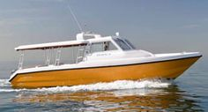 The Leading Exporter of Passenger Boats & Specialty Crafts from Dubai to the World.