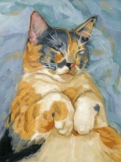 Custom Cat Portrait, 10x10 or 10x12 oil painting with expression and personality. $175.00, via Etsy.