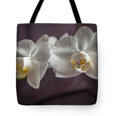 #AnnaMatveeva #FineArtPhotography #Photography #ArtForHome #Favorite #Orchid #ToteBag #Nature #Flowers