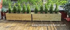 2 stk isolerte blomsterkasser i tre. 200x50x50cm LBH. På takterrasse.