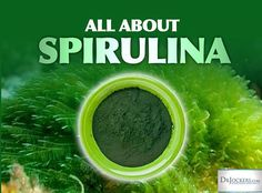 Spirulina is found all over the world in fresh water, saltwater oceans & natural springs. It was renowned for its healing properties and was a staple part of the North African and Aztec Indian (Mexico) diet many years ago. Today, natural health...