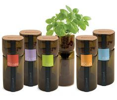 Hydroponic herb garden made from recycled wine bottles. Awesome ... #Aquaponics #Hydroponics #Gardening #Design
