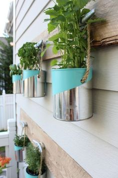 PLANT A MINI HERB GARDEN- Collect aluminum cans, add an interesting color graphic. It's the start of summer and it's time to make use of the great outdoors. Transform your backyard into an escape with these easy hacks. Diy Jardin, Hanging Herbs, Fence Hanging Planters, Hanging Gardens, Wall Planters, Hanging Wire, Diy Herb Garden, Tin Can Garden Ideas, Vegetable Garden