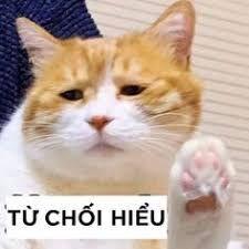 #tải_nhạc_miễn_phí #tai_nhac_mien_phi #tai_nhac #tai_nhac_mp3 #tai_nhac_hay #tai_nhac_hot #tai_nhac_ve_may #tai_nhac_nhanh Cute Cat Memes, Cute Love Memes, Funny Jokes, Funny Blogs, Funny Stories, Memes Humor, Cute Gif, Funny Cute, Anime Animals