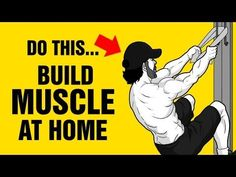 The Perfect Home Muscle Building Workout For Beginners and Teenagers - 100% Bodyweight - YouTube