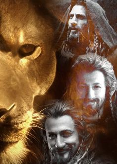 Fili. The Lion. What a hottie. --- Agreed. *hugs him* he's my lion. *pokes him on the nose*