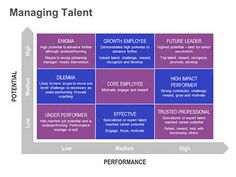 Managing Talent – Performance vs. Potential Matrix: Single Slide