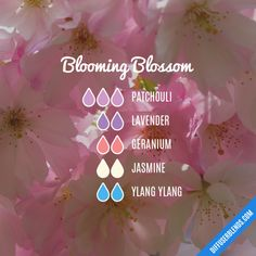 Blooming Blossom - Essential Oil Diffuser Blend