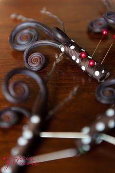 Fiddlehead ferns and ribbon