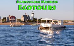 Cape Cod Daily Deal with Barnstable Harbor Ecotours- guided by an expert naturalist who will introduce you to Barnstable Harbor, The Great Marsh, the Sandy Neck barrier beach, Sandy Neck Cottage Colony and the Sandy Neck Lighthouse. A wealth of wildlife awaits! Perfect for kids - a wealth of education about the wildlife, ecology of the salt marsh ecosystem, the geologic and human history of Cape Cod and Barnstable Harbor. Sit back and enjoy the scenery! $25 http://www.capecoddailydeal.com/