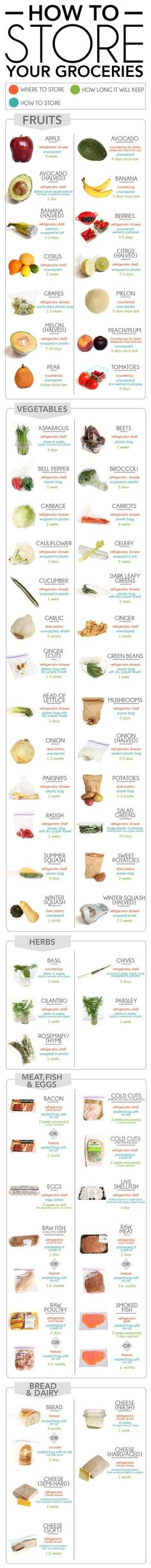 The Definitive Guide to Storing Your Groceries So They Last