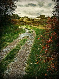 """✻ღϠ₡ღ✻  (¯`✻´¯)   `*.¸.*✻ღϠ₡ღ¸.✻´´¯`✻.¸¸.Ƹ̴Ӂ̴Ʒ..  """"You will recognize your own path   when you come upon it, because you will suddenly have all the energy and imagination you will ever need.""""  ~Jerry Gillies~  https://www.facebook.com/photo.php?fbid=269638529844160=a.100591266748888.466.100502563424425=1"""