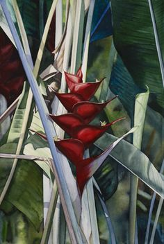 Kathleen Alexander WATERCOLOR blue heliconia