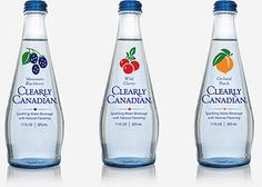 Bring back Clearly Canadian! Clearly Canadian Blackberry, Cherry, Peach and Raspberry Bottles 90s Childhood, Childhood Memories, Canadian Drinks, Discontinued Food, 90s Food, 90s Nostalgia, Have You Tried, Ol Days, 90s Kids