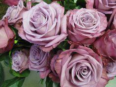 Moody blues roses: all year $$ | Purple Flowers | Pinterest ...